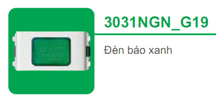 3031NGN_G19